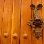 Metal knocker shaped fish. door — Stock Photo