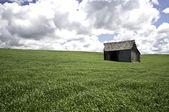 Barn in field — Stock Photo