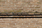 Brick and moss — Stock Photo