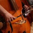 Постер, плакат: Close up view of woman playing a cello