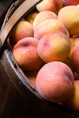 Close-up of peaches in a basket — Stock Photo