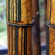 Bamboo barrels — Stock Photo