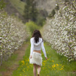 Woman Walking in Orchard — Stock Photo