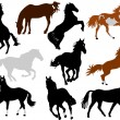 Horses collection vector — Stock Vector