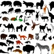 Collection of wild animals vector silhou - Stockvektor