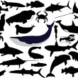 Collection of aquatic wildlife vector si - Stock Vector