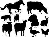 Vector animales de granja — Vector de stock