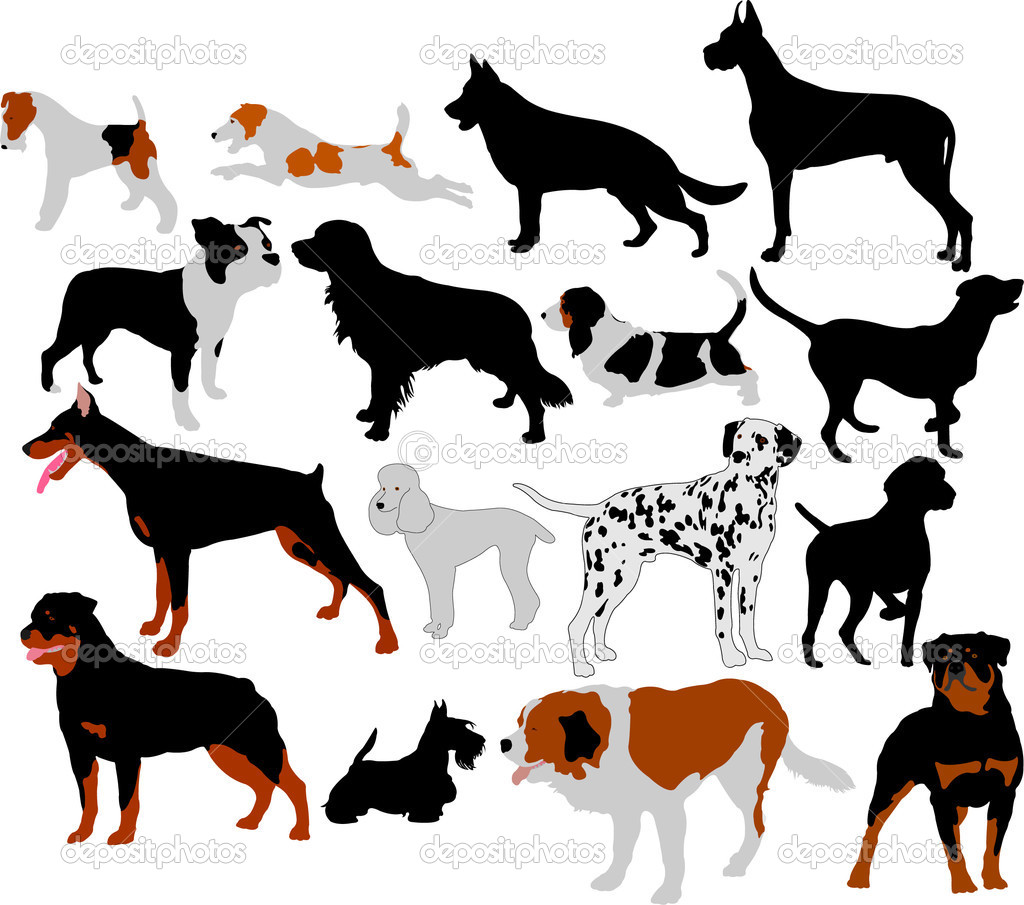 Collection of dogs silhouettes — Stock Vector #2766380