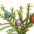 Christmas balls on fur-tree branch — Stock Photo