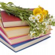 Wild flowers and old books — Stock Photo