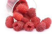 Ripe isolated raspberry — Stock Photo