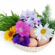 Stock Photo: Easter eggs and flowers