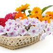 Flowers in basket — Stock Photo #3717493