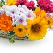 Stock Photo: Flowers in basket postcard