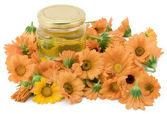 Medical oil from a calendula — Stock Photo