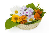 Easter basket with flowers — Stock Photo
