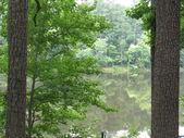 Lake point — Stock fotografie