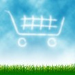 Shopping Cart — Stock Photo #3036114