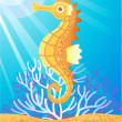 Sea Horse — Stock Vector