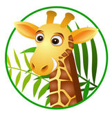 Cute giraffe cartoon — Stock Vector