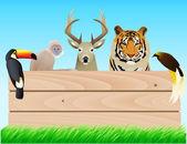Wild animal — Stock Vector