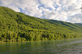 River in the mountains landscape — Stock Photo