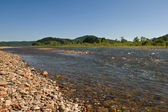 River with pebbles — Stock Photo