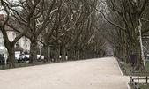 Chemin d'accès au parc de he — Photo