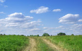 Green field and blue sky landscape with road — Stock Photo