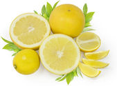 Yellow citrus — Stock Photo