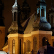 Stock Photo: Cathedral Church in Poznań at night