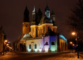 Cathedral Church in Poznań at night — Stock Photo