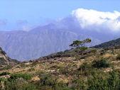 Girit dağlarda — Stok fotoğraf
