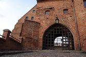 Gothic gateway — Stock fotografie