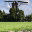 Stock Photo: Wind mill in netherlands