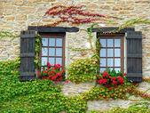 Wall with windows and flowers — Stock Photo
