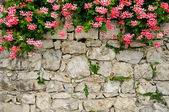 Picturesque stone wall — Stock Photo