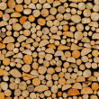 Wood stock background — Stock Photo