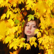Autumn girl — Stock Photo #2868022