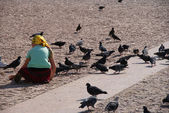 Das Mädchen und die Tauben — Stockfoto
