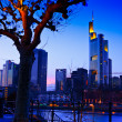 Frankfurt on the main — Stock Photo #2856582
