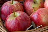 Close up of Red Apples — Stock Photo
