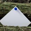 Stock Photo: White Post - it on Woodpile