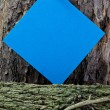 Stock Photo: Blue Post - it on Woodpile