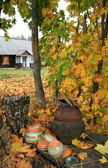Farmstead autumn — Stock Photo