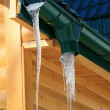 Stock Photo: Spring icicle
