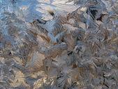 Padrões em vidro — Foto Stock
