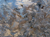 Patterns on glass — Stock Photo