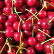 Cherries — Stock Photo #3418525