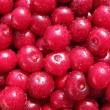 Fresh cherry — Stock Photo #3546509